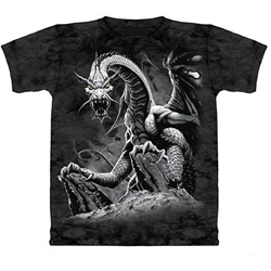 Black Dragon Youth's Tee Shirt 43-1512520